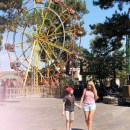 Growing up with Knott's Camp Spooky