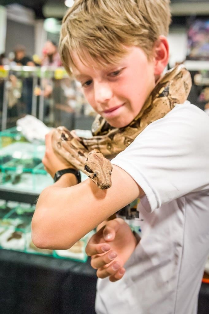 Snakes at the America's Family Pet Expo