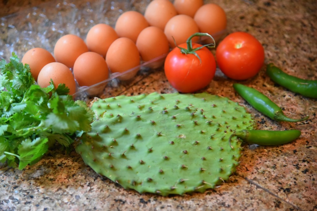 Cactus - Nopales Recipes