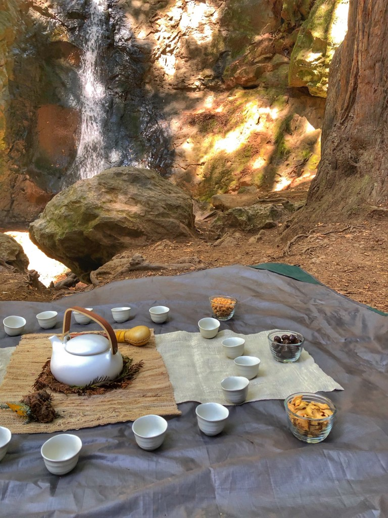 Tea at Cascade Falls in San Francisco