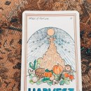 The Medicine Woman Tarot Card Message of the Day: Harvest – Wheel of Fortune
