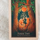 Tarot Card Message of the Day: Flame Tree – The Start of Something New!!