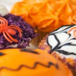 Pumpkin Patch Perfection at Casey's Cupcakes