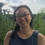 Shiyin Lim