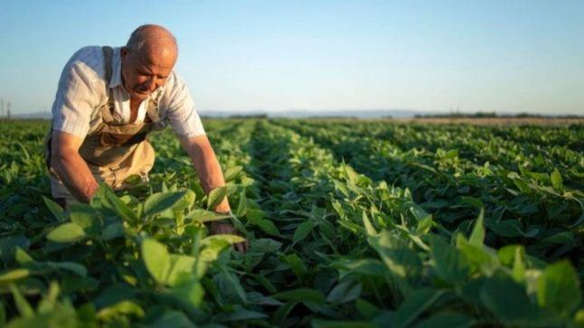 Profissão agricultor