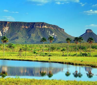 Eventos culturais de Novo Alegre e Pindorama são incluídos no Calendário Cultural do Tocantins