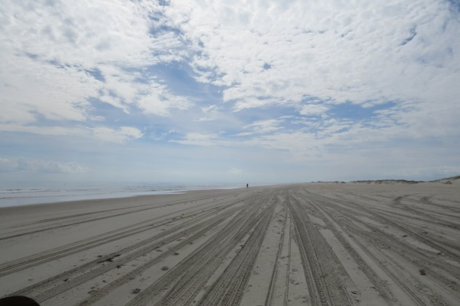 Nighttime beach driving will be permitted on Ocracoke beaches except for areas where there still are sea turtle nests.