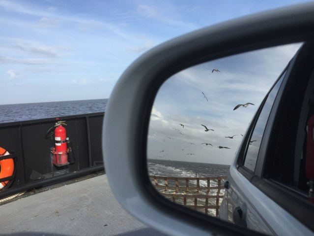 A view of the back of the Swan Quarter ferry. Photo: C. Leinbach