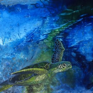 This painting of a sea turtle is among new work artist Barbara Adams will show tonight from 5 to 8 p.m. in Down Creek Gallery.