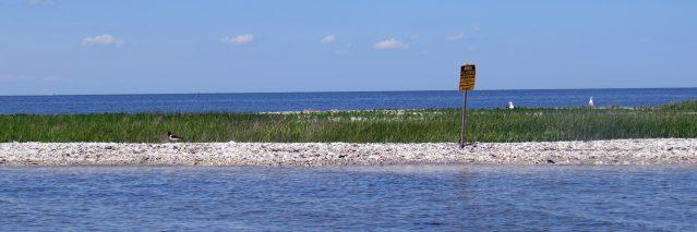 Beacon Island, or North Rock.