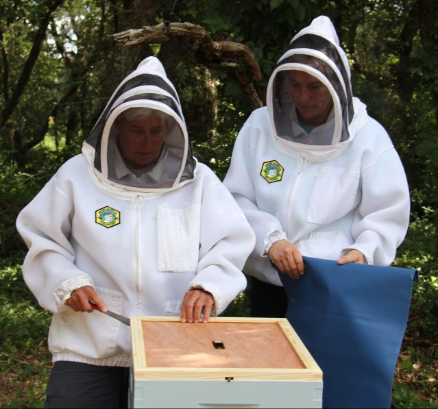 Mary Dean and Darlene Styron check on one of their four bee hives.