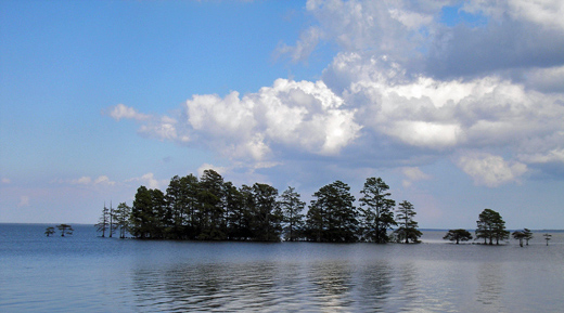 Lake Mattamuskeet. Photo courtesy of FWS