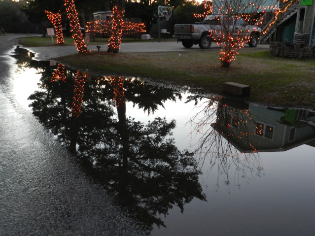Puddles along Loop Road capture reflections at the home of Wade Austin, Most Traditional winner.