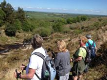 Dartmoor Nordic Walking