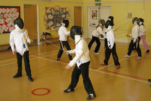 Image: Sport Unlimited Fencing - North Tawton