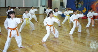 Image: Juniors Karate