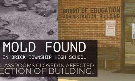 Brick: Mold Found in High School