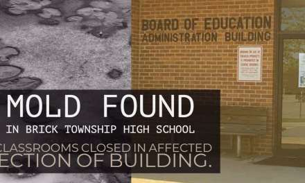 Brick: Mold Found in High School