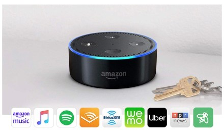 Smart Home: What is Alexa Thinking?