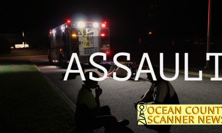 Point Pleasant Beach: Aggravated  Assault