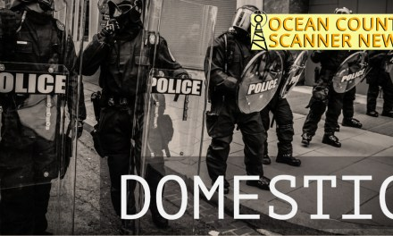 Ocean Gate: Active Domestic