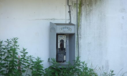 LACEY: Tampa Road- 911 Mis-Dial?