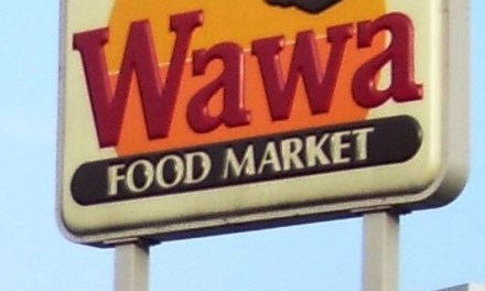 LACEY: Wawa North- Suicidal Party