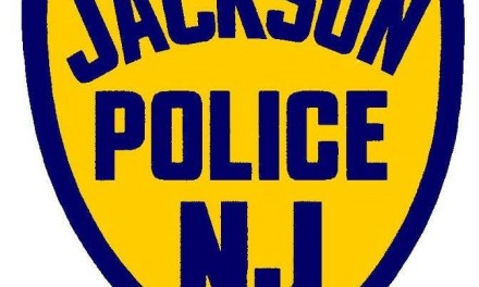JACKSON: Drunk Driver Fled Cops, Almost Ran One Over