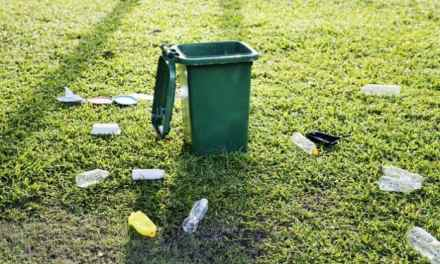 Manchester Urged To Recycle Correctly