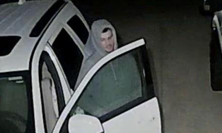 BARNEGAT: Loser Car Burglary Suspect Captured & Arrested