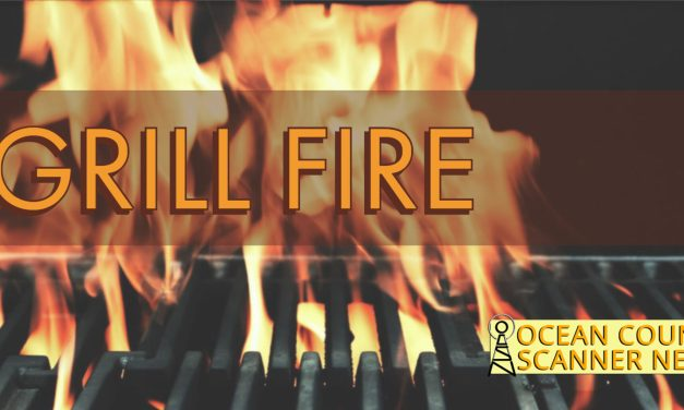 FREEHOLD: GRILL FIRE