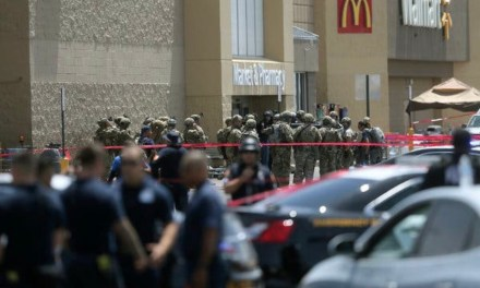 TEXAS: El Paso Shooting: Massacre at a Crowded Walmart in Texas Leaves 20 Dead