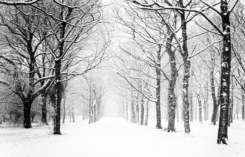 Snow! Snow! Snow! With snow predicted for our area let us know how it is where you are