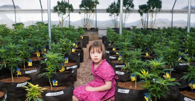 Charlotte Figi, Pioneer Of Medical Marijuana, Passes Away at 13 Years Old from Covid-19