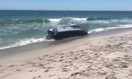 SEASIDE PARK: Whale Jumps Onto Boat