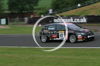 © Octane Photographic Ltd. 2010. British Touring Car Championship – Oulton Park. Saturday 5th June 2010. Digital Ref : 0125CB7D3422