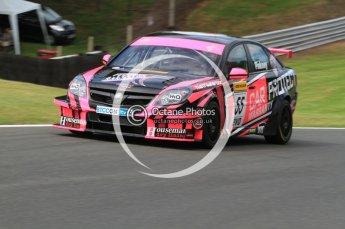 © Octane Photographic Ltd. 2010. British Touring Car Championship – Oulton Park. Saturday 5th June 2010. Digital Ref : 0125CB7D4535