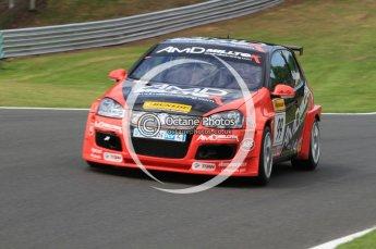 © Octane Photographic Ltd. 2010. British Touring Car Championship – Oulton Park. Saturday 5th June 2010. Digital Ref : 0125CB7D4539