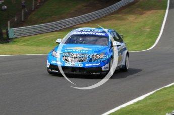 © Octane Photographic Ltd. 2010. British Touring Car Championship – Oulton Park. Saturday 5th June 2010. Digital Ref : 0125CB7D4588