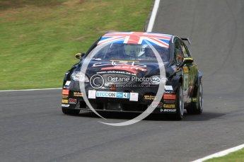 © Octane Photographic Ltd. 2010. British Touring Car Championship – Oulton Park. Saturday 5th June 2010. Digital Ref : 0125CB7D4612