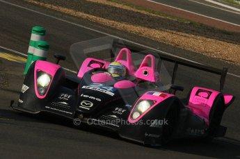 2010 Le Mans. Arnage Corner. Digital Ref : LW40D4601