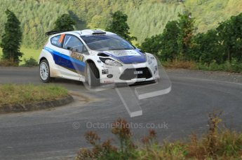 © North One Sport Ltd. 2010 / Octane Photographic Ltd. 2010 WRC Germany SS15, 22st August 2010. Digital Ref: 0210lw7d7862