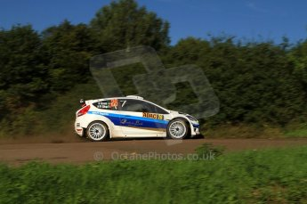 © North One Sport Limited 2010/Octane Photographic Ltd. 2010 WRC Germany SS9 Freisen Westrich I. 21st August 2010. Digital Ref : 0160LW7D5651