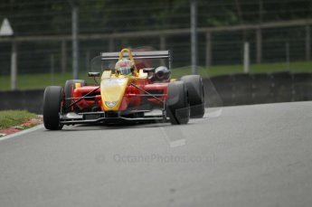 © Octane Photographic Ltd. 2011. British F3 – Brands Hatch, 18th June 2011. Digital Ref : CB1D4482