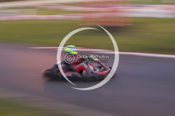 © Octane Photographic Ltd. 2011. Milton Keynes Daytona Karting, Forget-Me-Not Hospice charity racing. Sunday October 30th 2011. Digital Ref : 0194lw7d1683