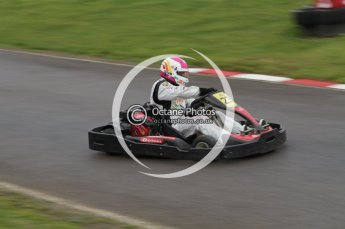© Octane Photographic Ltd. 2011. Milton Keynes Daytona Karting, Forget-Me-Not Hospice charity racing. Sunday October 30th 2011. Digital Ref : 0194lw7d8636
