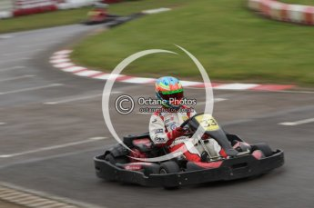 © Octane Photographic Ltd. 2011. Milton Keynes Daytona Karting, Forget-Me-Not Hospice charity racing. Sunday October 30th 2011. Digital Ref : 0194lw7d8764