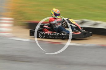 © Octane Photographic Ltd. 2011. Milton Keynes Daytona Karting, Forget-Me-Not Hospice charity racing. Sunday October 30th 2011. Digital Ref : 0194cb7d8665