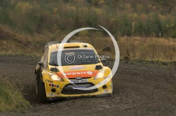 © North One Sport Ltd 2011 / Octane Photographic Ltd 2011. 12th November 2011 Wales Rally GB, WRC SS17 Myherin. Digital Ref : 0198cb1d9383