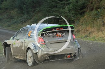 © North One Sport Ltd 2011 / Octane Photographic Ltd 2011. 12th November 2011 Wales Rally GB, WRC SS17 Myherin. Digital Ref : 0198cb1d9653
